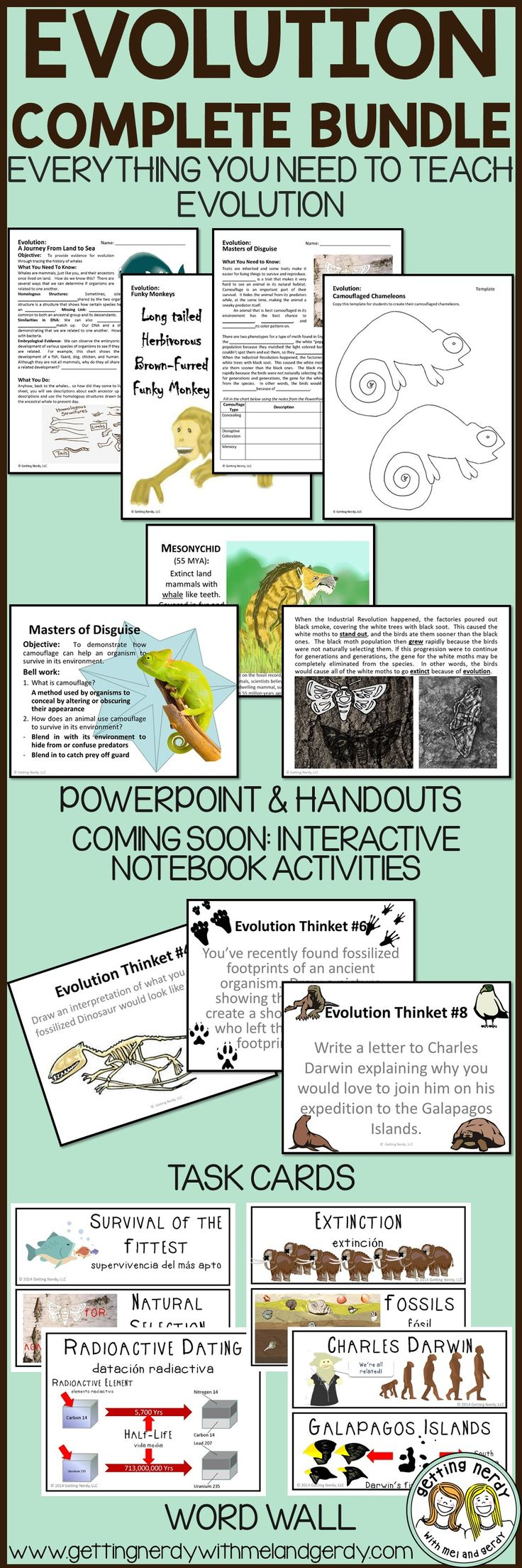 What idea did hardy and weinberg disprove - My Students Had A Blast With These Evolution Activities