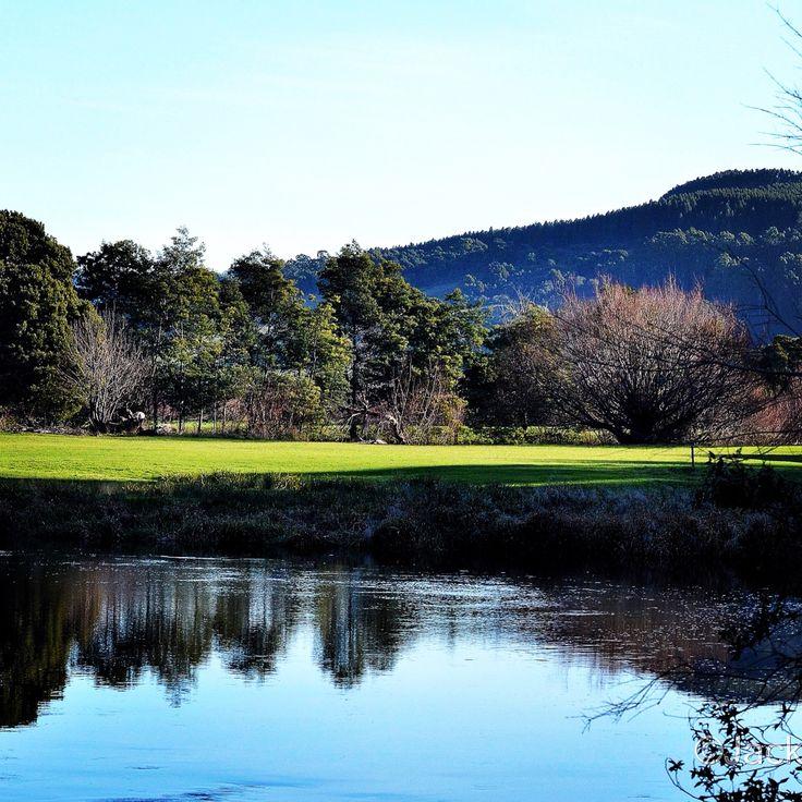 The serenity at Wings Wildlife Park, Gunns Plains Tasmania