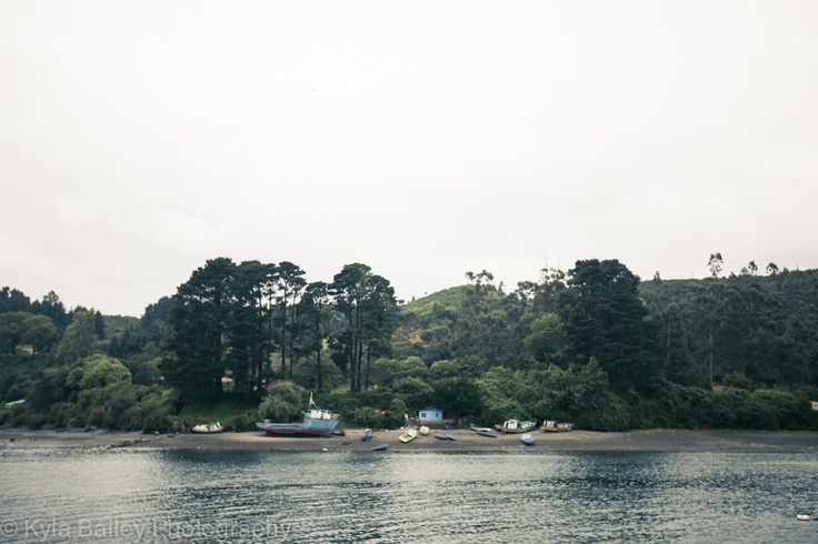 In the fishing village of Puerto Montt, Chile.