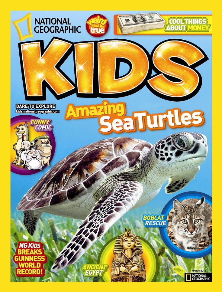 national geographic kids essay contest