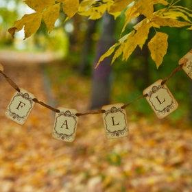 Autumn ~ My favourite season!