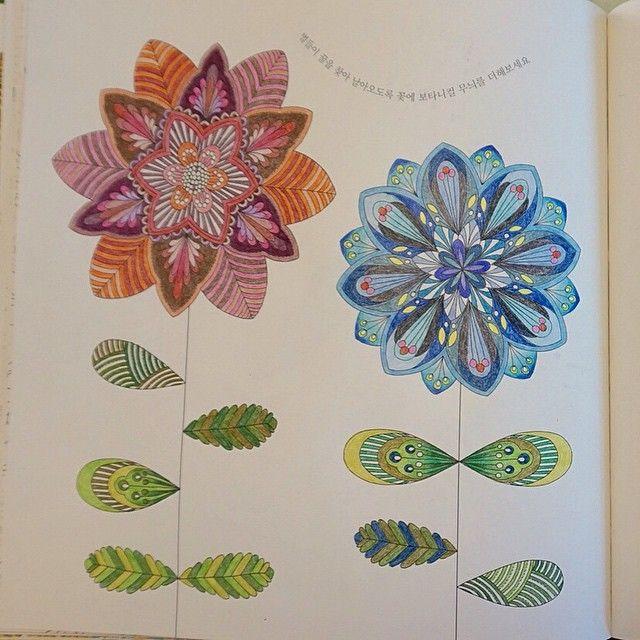 Johanna Basford Animal Kingdom Coloring Book Books