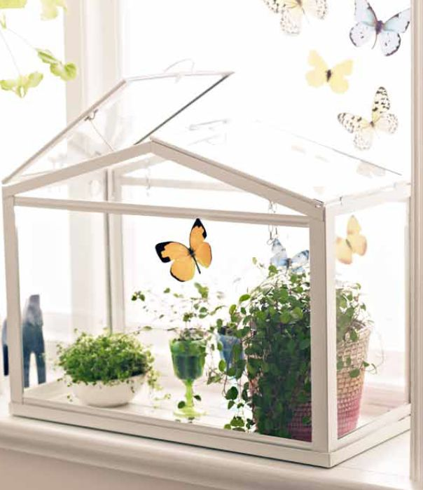Mini metal and glass greenhouse/terrarium only from Ikea. Would look  amazing in shop display - 56 Best Terrariums Serre * Greenhouse Terrariums Images On