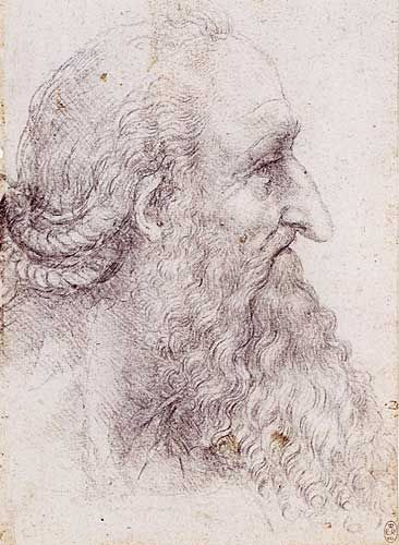 Profile Study of an Old Man with a Beard and Braided Hair, Leonardo da Vinci