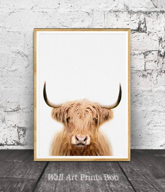 Highland Cow Print Cow Wall Art Highland Cow Wall Art Cow Etsy Cow Wall Art Highland Cow Print Animal Wall Art