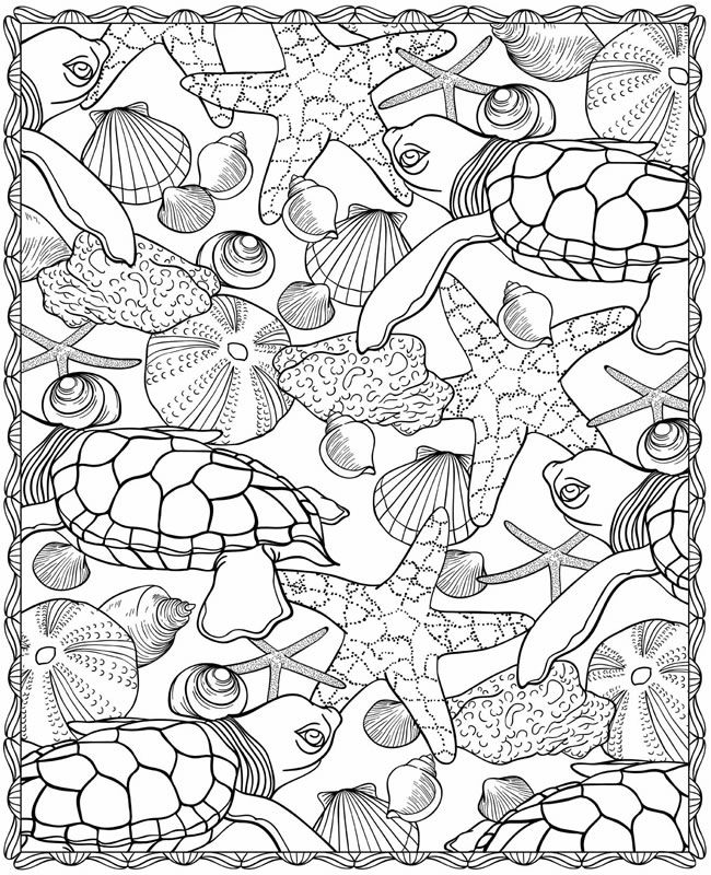 turtle starfish and seashell coloring page - Seashell Coloring Pages Printable
