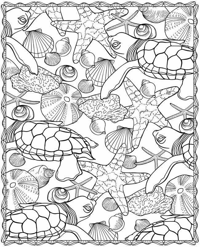 Muscheln und andere Schätze im Meer #Ausmalbild #