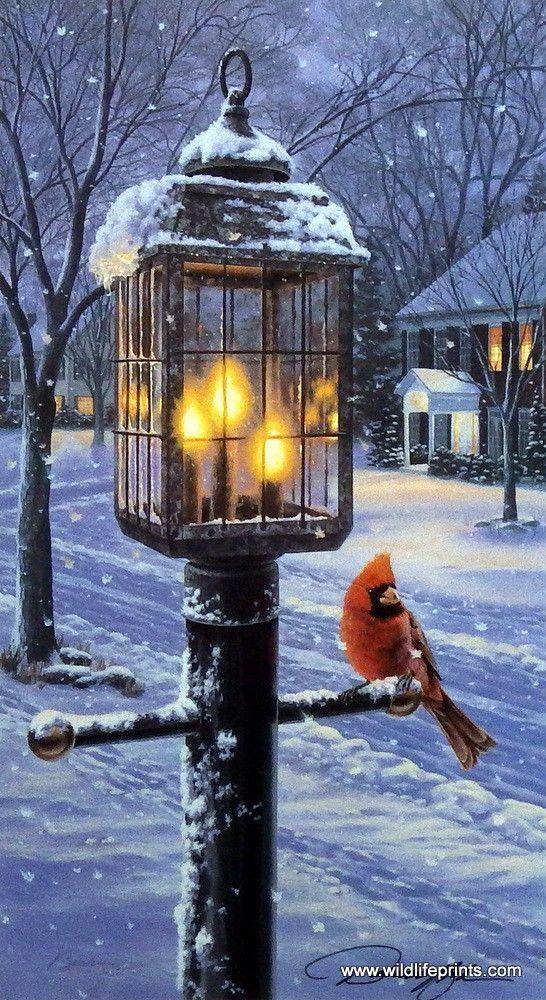 Darrell Bush Warmth Of Winter I: