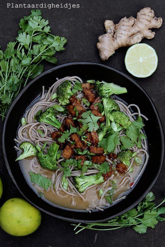 Miso soep met sobanoedels en tempeh   Plantaardige, vegan, veganistische en vegetarische recepten voor dierenwelzijn, je gezondheid, het milieu én wereldvoedselverdeling. D Rozeboom