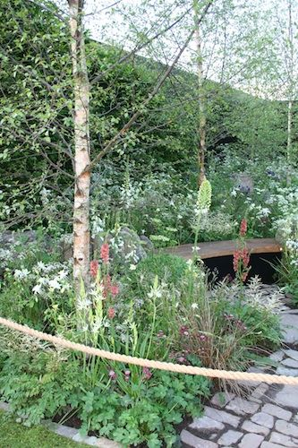 Vital Earth: The Nights Sky Garden. RHS Chelsea Flower Show 2014. Click to read article and to see plants list used.