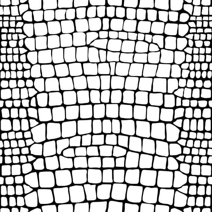 рисунок кожи крокодила эта теория