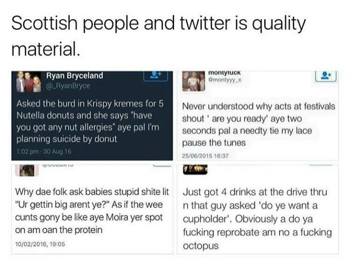 Best Scottish Tweets Ideas On Pinterest Scottish Twitter - The 19 funniest things tweeted by women in 2016