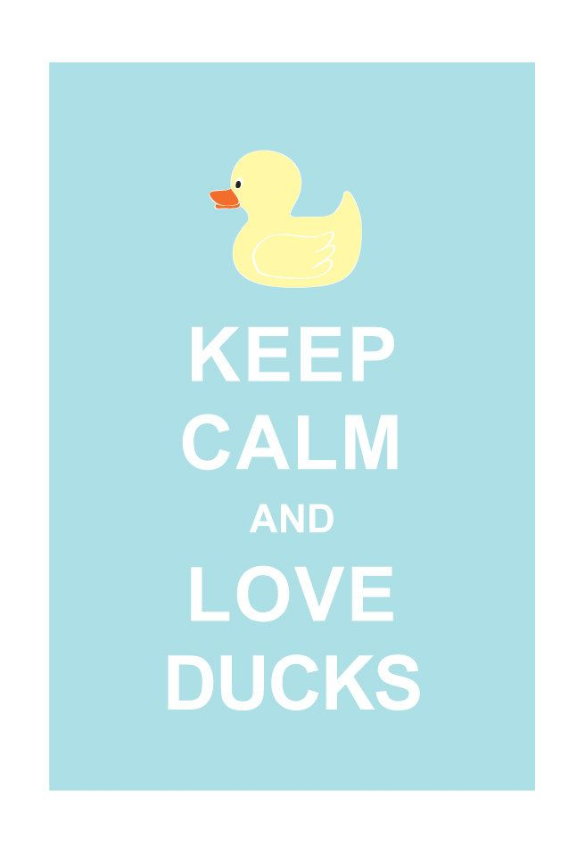 Large 13X19 Keep Calm and Love Ducks : Personalized custom Wedding Birthday Anniversary Gift Children Kids Home Decor. $15.80, via Etsy.