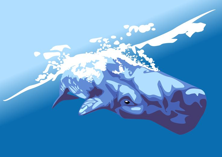Whale, Pot Whale, Cachalot, Sperm Whale, Mammal, Animal