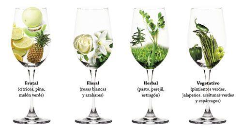 /sauvignon-blanc-aromas