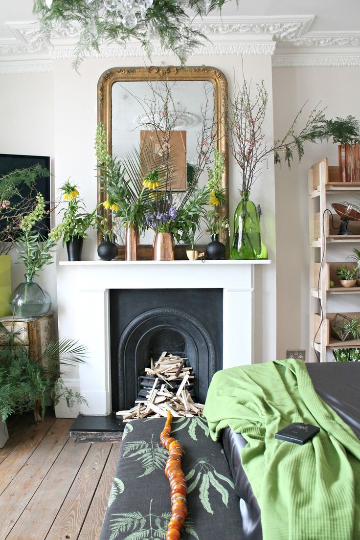 Ideas of How to Display Indoor Plants Harmoniously
