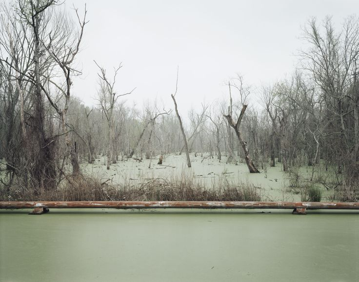 """Swamp and Pipeline, Geismar, Louisiana"" (negative 1998, print 2012) Inkjet print by Richard Misrach. High Museum of Art, Atlanta."