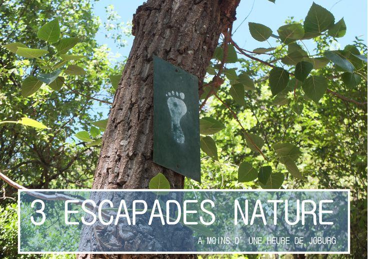 """Suggestions d'escapades """"nature"""" adaptées aux enfants à moins d'une heure de la trépidante Jozi."""