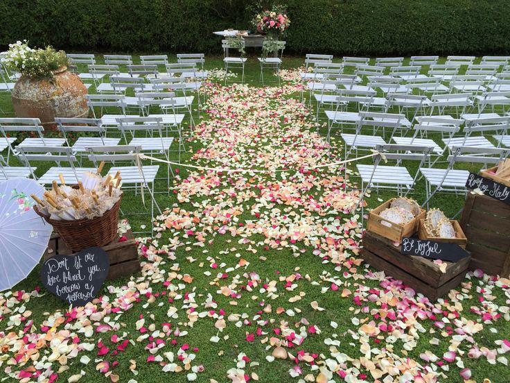 Florals: La Rosa Canina Iphonepic: Tommaso Torrini
