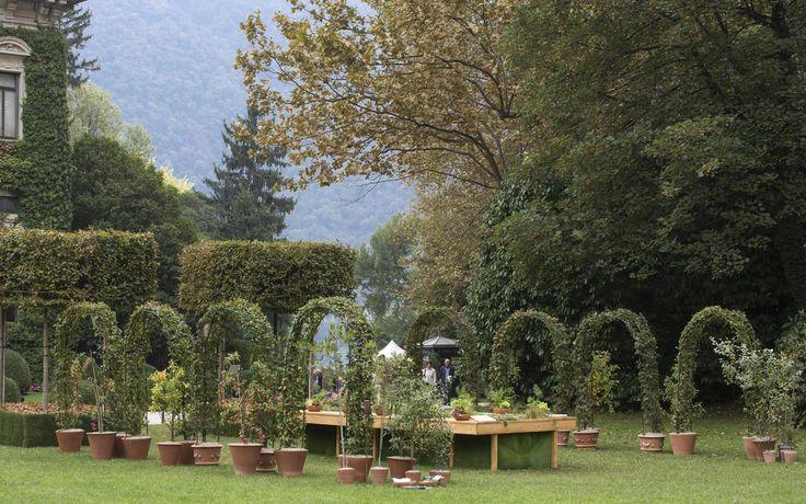 'Desco al fresco' by Anna Piussi. A ready-made formal framework of hornbeam for a Renaissance-inspired show garden.