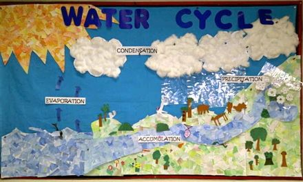After discussing the water cycle, the students will go home and make a poster of the cycle using different craft materials such as cotton balls to make the clouds, etc. to count as their assessment of the water cycle.