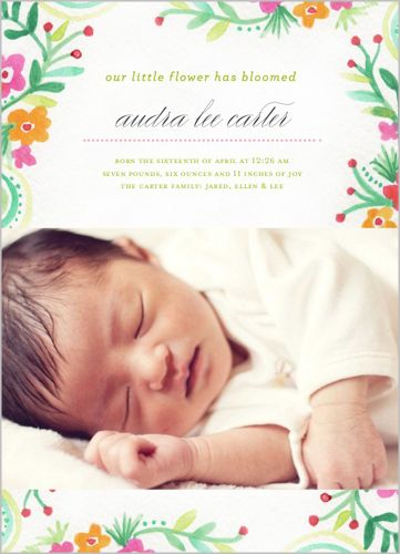 tell friends and family about your bundle of joy create baby girl birth announcements to share the good news