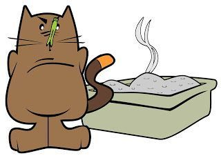 How To Get Cat Pee Smell Out Of Carpet, This Is An Awesome Recipe And  Works! I Own 3 Cats And Can Tell You It Works To Get Cat Pee Smell Out ...