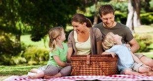 Jauhkan Serangga Dari Area Piknik Anda | inZonia