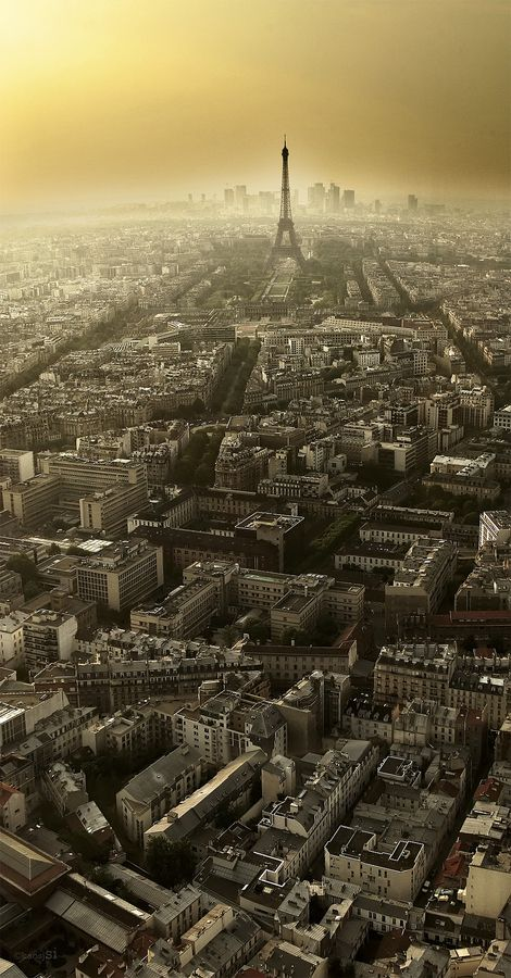 A breathtaking aerial shot of Paris.