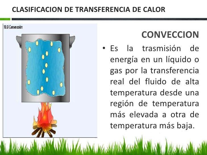 Biofisica De La Termorregulacion In 2020