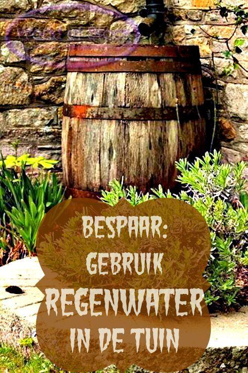 Bespaartip: Vang regenwater op en gebruik deze om je plantjes water te geven. - Bespaarmama