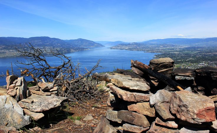 Scorched by a fire in 2003, the barren mountainside of the Johns Family Nature Conservancy offers unparalleled views of the Okanagan Valley.