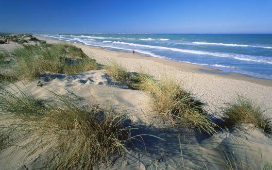 La playa de Els Vivers, en Guardamar del Segura, Alicante.