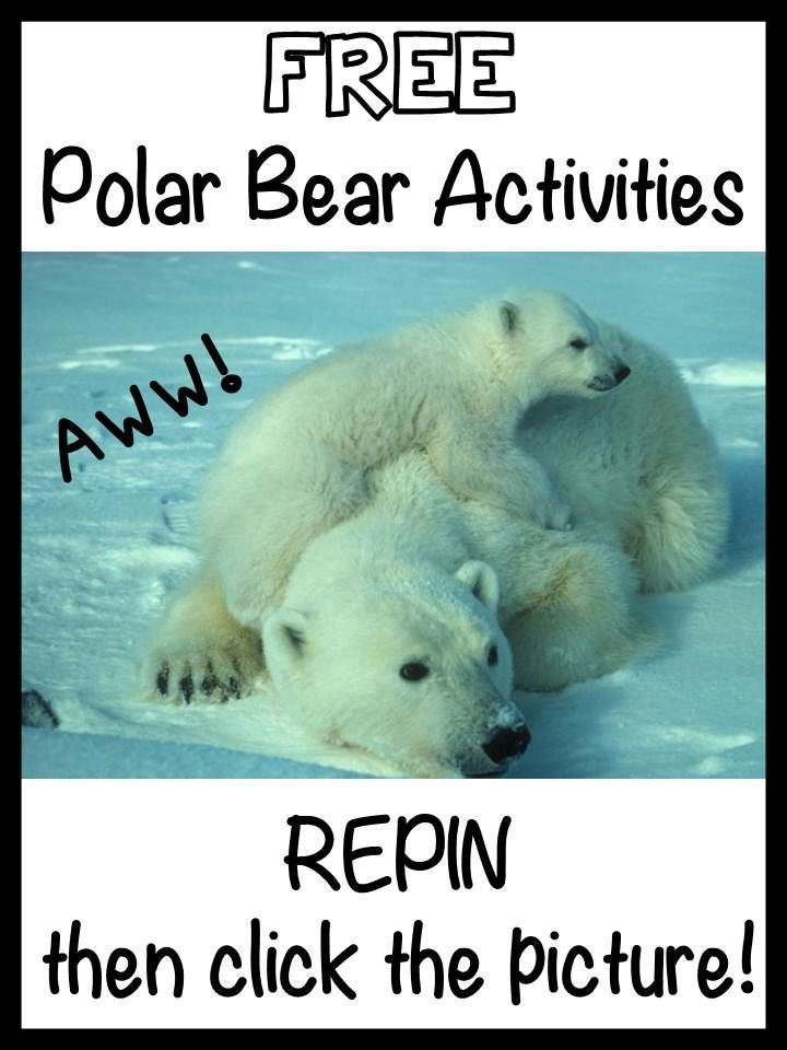 FREE Printable Activities - Winter, Arctic Animals, Polar Bears, Penguins -- Thank you for all you do for kids!!!