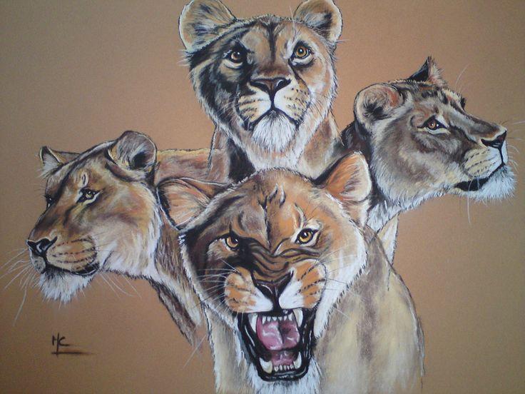 Les 11 meilleures images du tableau lion lionne lionceau - Lionne dessin ...