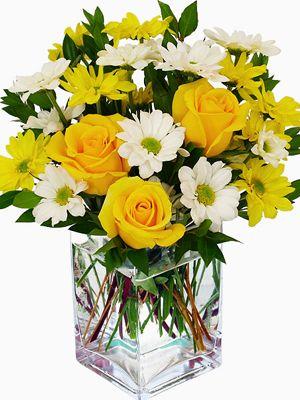 Aline: Arreglo de rosas amarillas acompañadas de maules en dos tonos en florero de vidrio.
