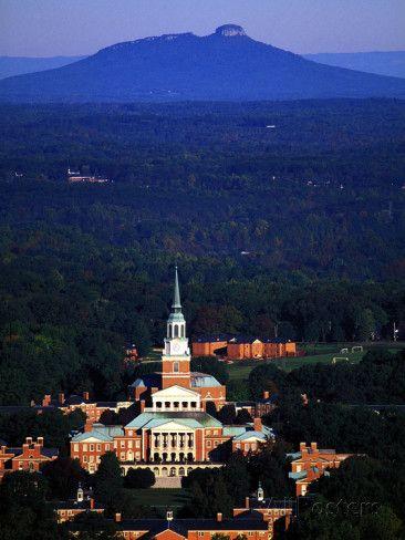 Best 25 Wake Forest University Ideas On Pinterest Wake