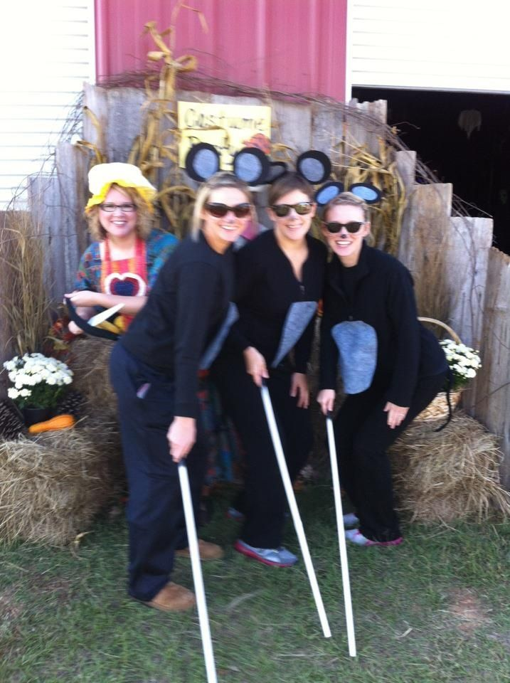 3 blind mice & the farmers wife costumes | Halloween ...