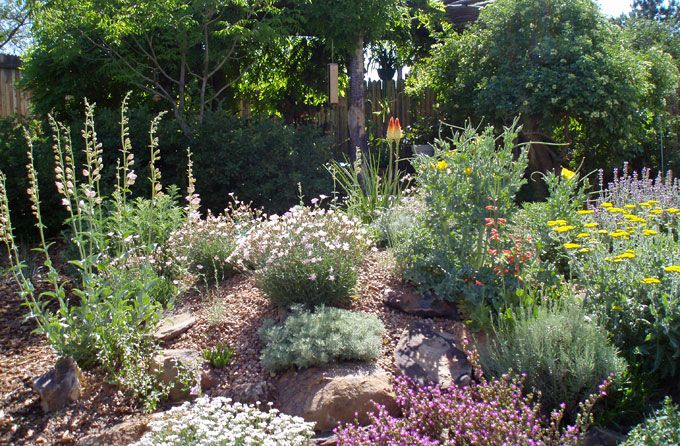 Rock gardens via waterwise landscapes in new mexico cool for New landscaping ideas