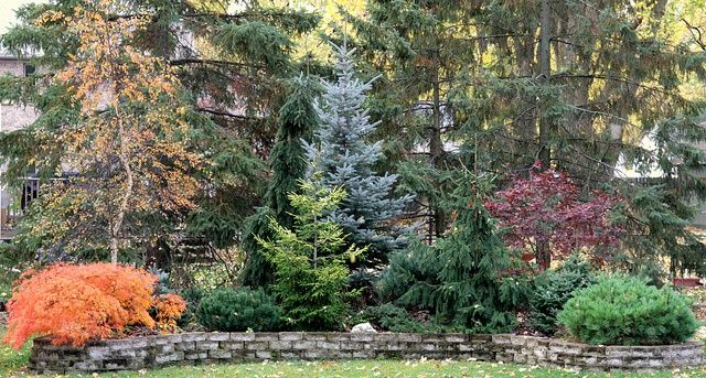 161 best images about landscaping on pinterest