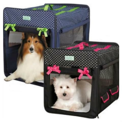 cute collapsible dog travel crate