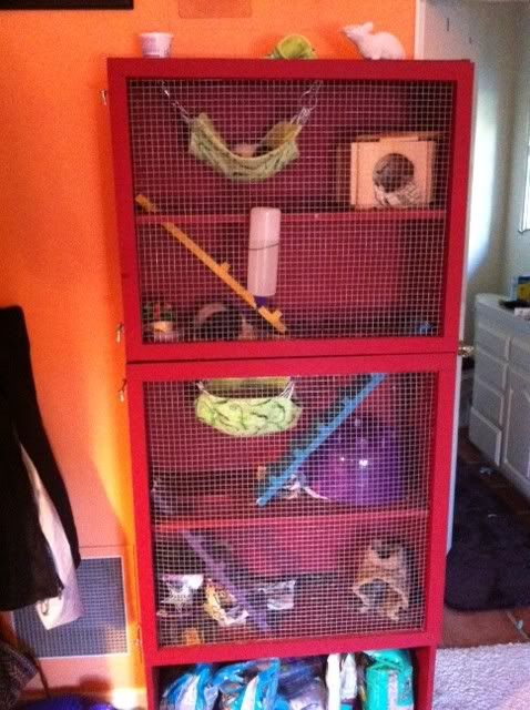 Bookshelf Rat Cage 28 Images Ikea Hamster Home Boing
