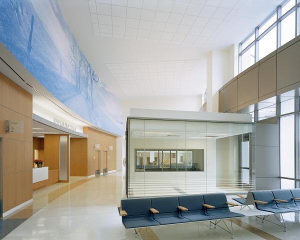 Perkins Eastman   Duke University Medical Center   Healthcare, Public, Waiting, ED