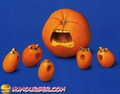 HUMOURGER HUMOUR FRUIT, photos SALADE DE FRUIT, images, videos droles, gags, gifs