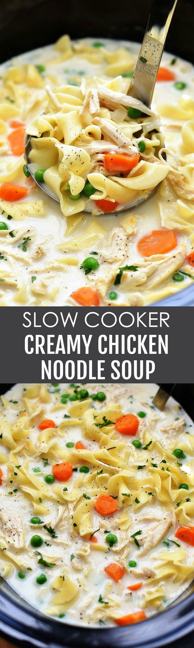 creamy chicken noodles soup