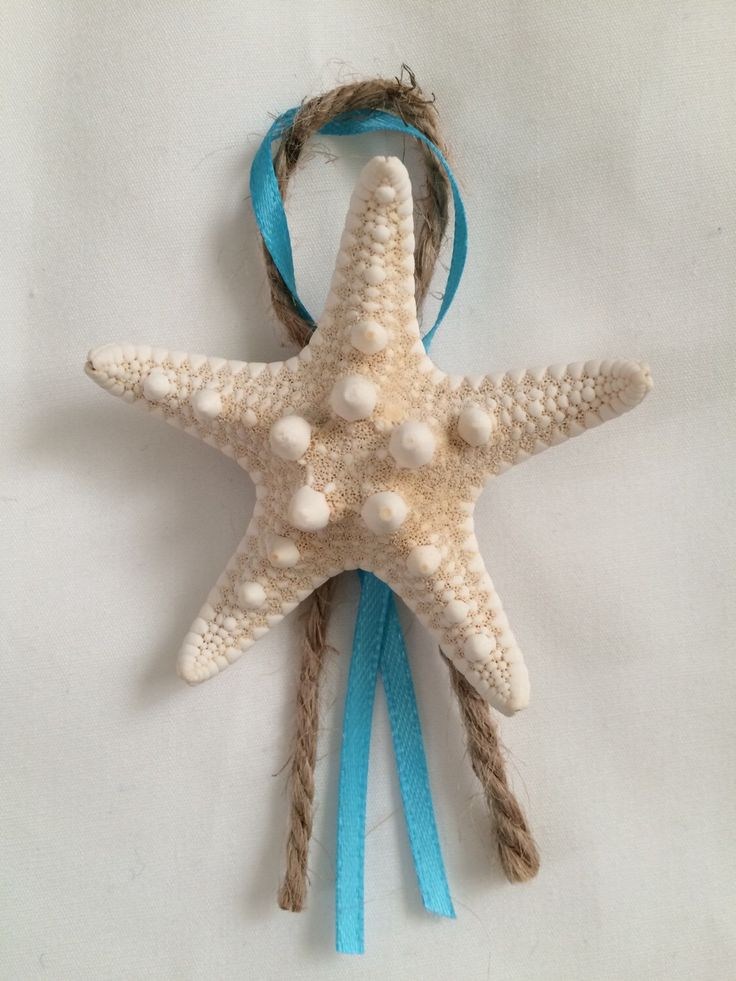 Set of 5 : Men's Knobby Starfish Boutonnieres, beach wedding, nautical  by SeaToLandDesigns on Etsy https://www.etsy.com/listing/221557363/set-of-5-mens-knobby-starfish
