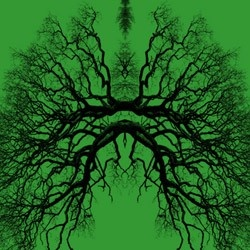 Are you breathing? Thank a Tree.  (love the image!)