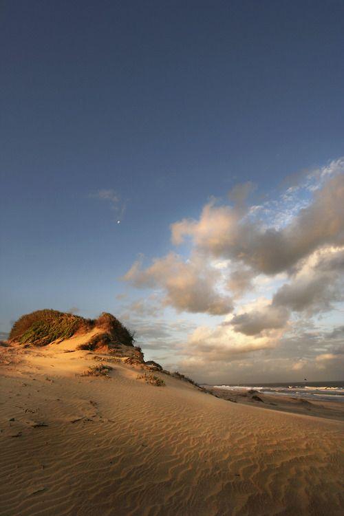 duice:    Mtunzini beach