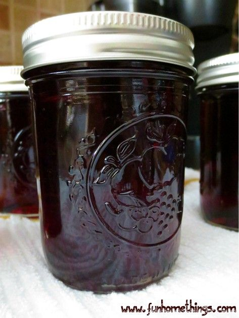 Homemade Grape Jelly | Fun Home Things
