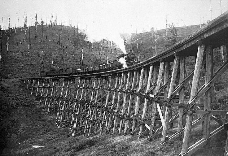 Negative - Steam Train on Bridge, Neerim, Victoria, circa 1915 - Museum Victoria